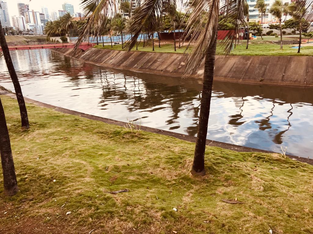 Poluição do Rio Camarajipe causa mau cheiro e proliferação de ratos no Parque Costa Azul