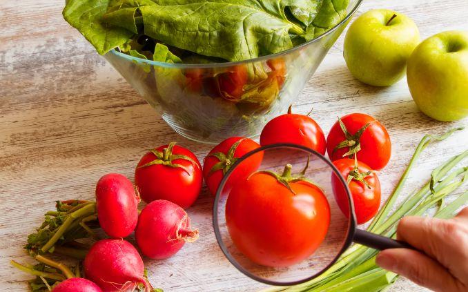 Segurança alimentar é tema de live do projeto Qualifica Gastrô
